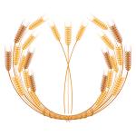 Фермерам нужна господдержка – 2 часть