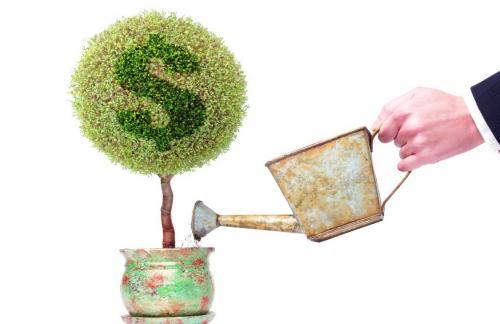 Как получить бизнес кредит с нуля?