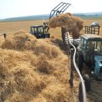 На развитие сельского хозяйства в 2016 году направят 237 млрд рублей