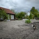 Иностранцам запретят покупать землю в ДФО