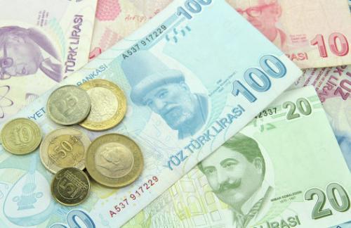 Курс турецкой лиры к доллару и фондовый рынок Турции перешли к росту