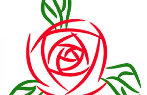 Бизнес-идея – продажа цветов (взгляд изнутри)